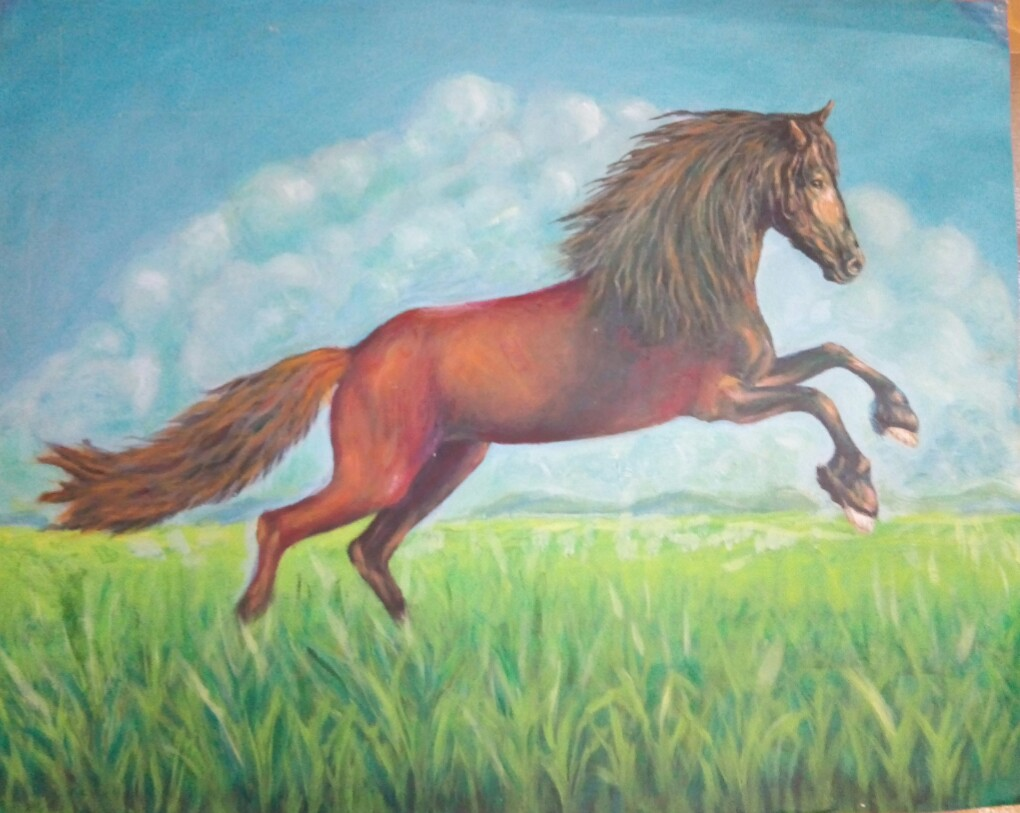 Nature study of a galloping horse