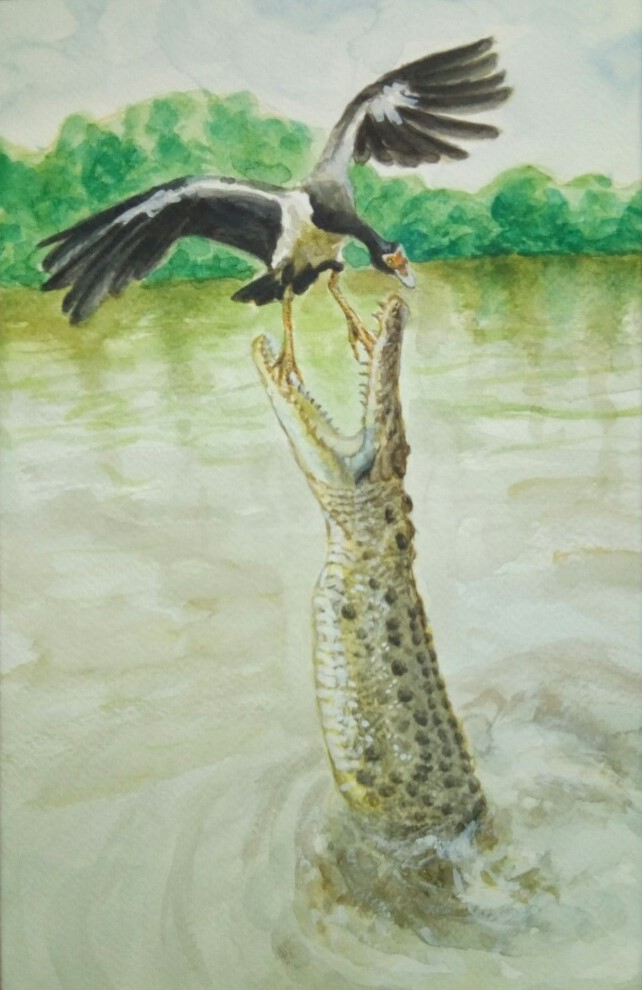 Nature study of a crocodile trying to eat a bird