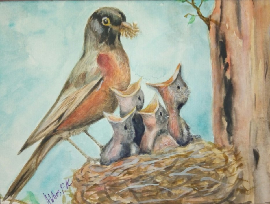 Nature study of a mother bird feeding her chicks