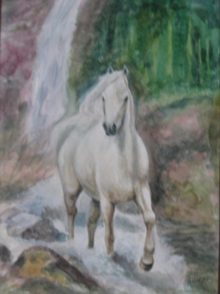 Nature study of a white horse against a waterfall